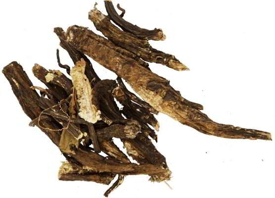 корень лопуха полезные свойства