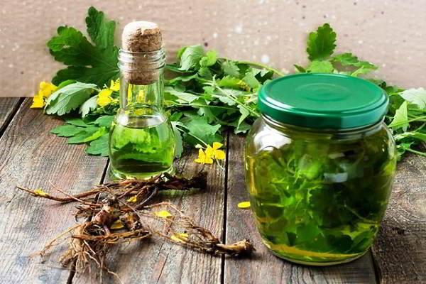 лечебные свойства настойки чистотела