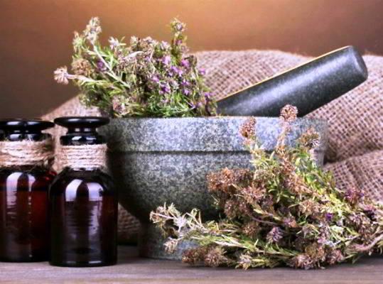 лечебные свойства тимьяна