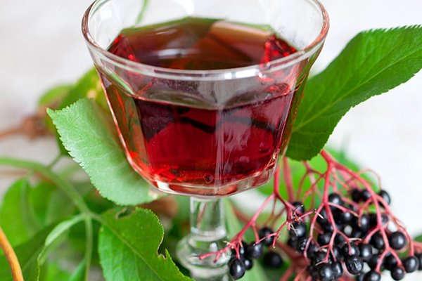 плоды бузины черной лечебные свойства
