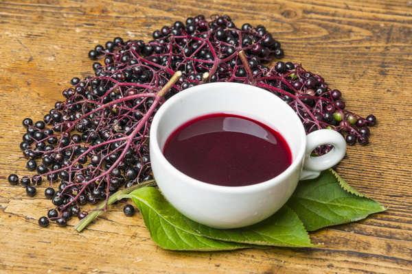 ягоды бузины черной лечебные свойства