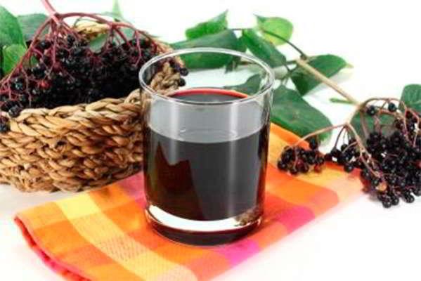 ягоды черной бузины применение