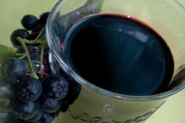 черноплодная рябина заготовки на зиму сок