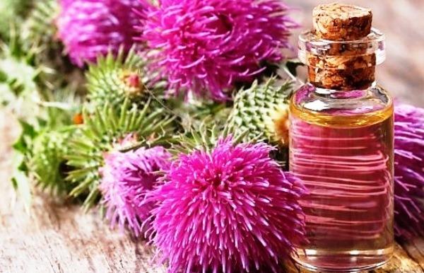 масло расторопши свойства и применение
