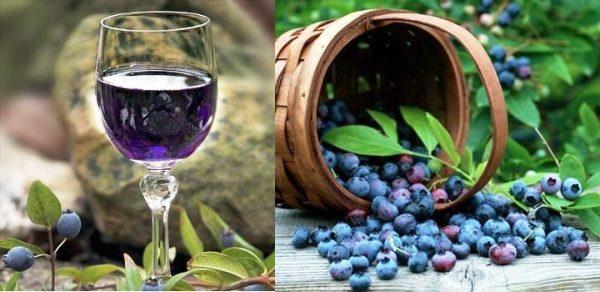 плоды ирги полезные свойства +и противопоказания