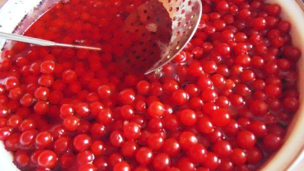 приготовление сока из ягод калины красной