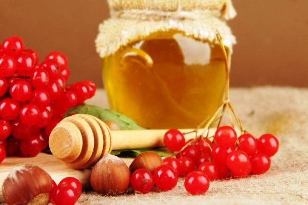 красная калина с медом