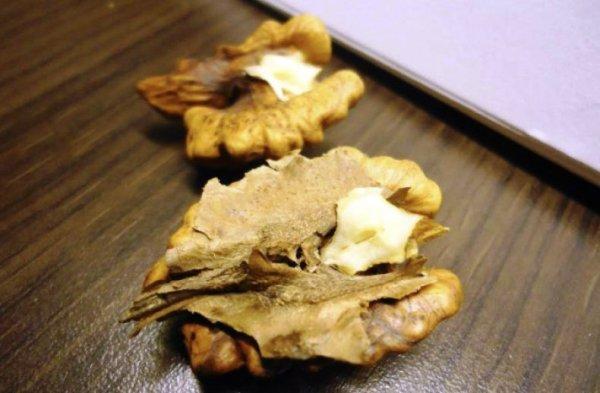 грецкий орех перегородка