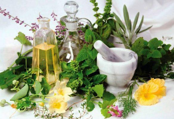 лечение поджелудочной железы травами