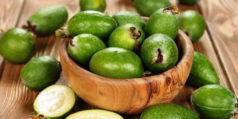 Фейхоа: полезные свойства, народные рецепты и противопоказания