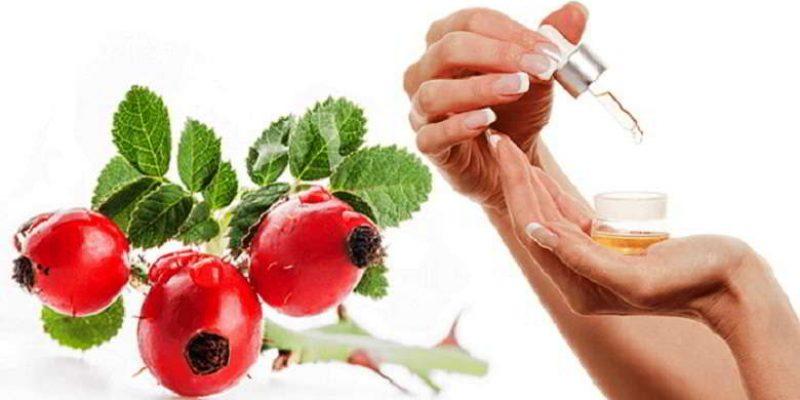 Масло шиповника: полезные свойства, применение, приготовление