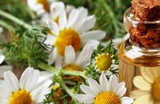 Масло ромашки: свойства и применение для волос, для лица, цена