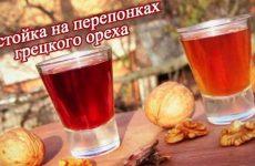 Спиртовая настойка на перегородках грецкого ореха приготовление, применение