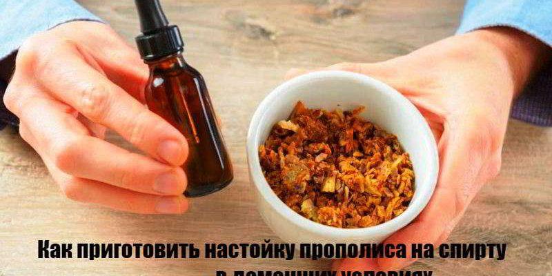 Настойка прополиса: рецепты приготовления на спирту, водке, воде