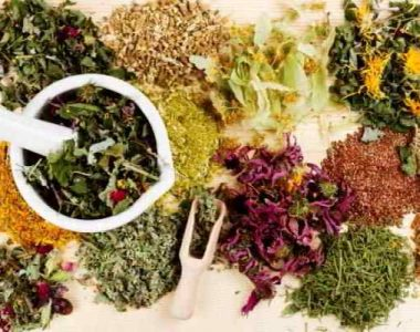 Лечебные травы и растения