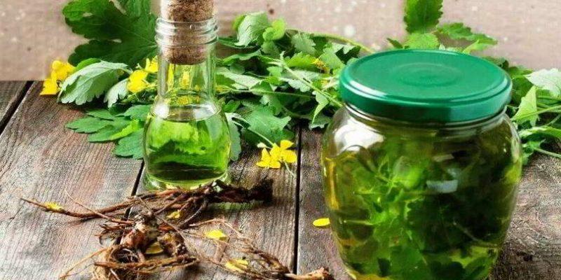 Как приготовить настойку чистотела на водке и как применять в домашних условиях