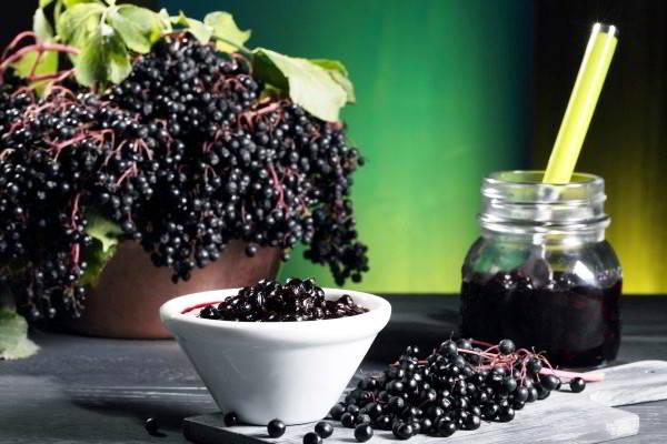 Варенье из плодов черной бузины