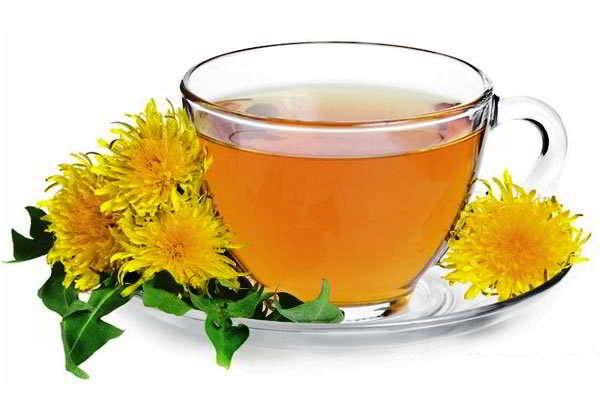 цветы одуванчика лечебные свойства и противопоказания