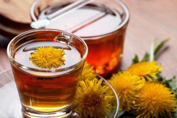 цветок одуванчик лечебные свойства