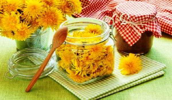 цветок одуванчик лечебный