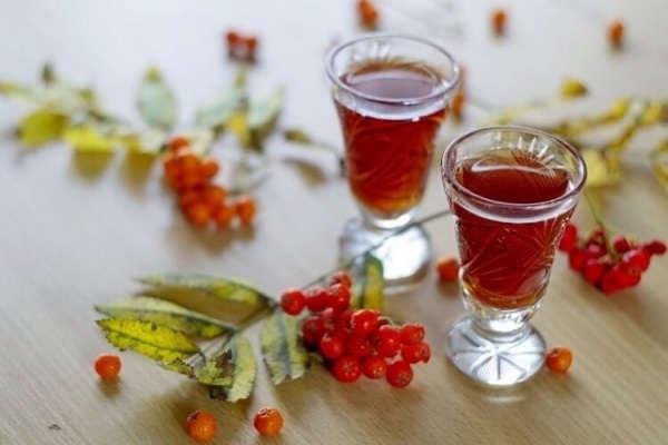 плоды рябины красной полезные свойства и противопоказания