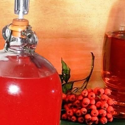 vino-iz-krasnoy-ryabiny