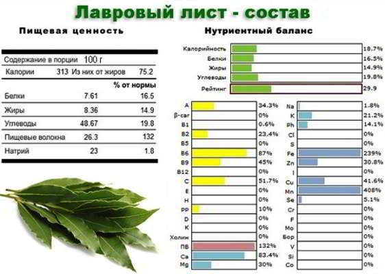 lavrovyj_list_svojstva
