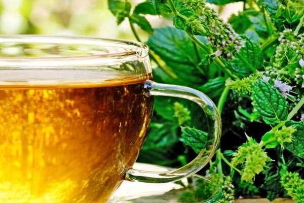 чай с мелиссой и чабрецом