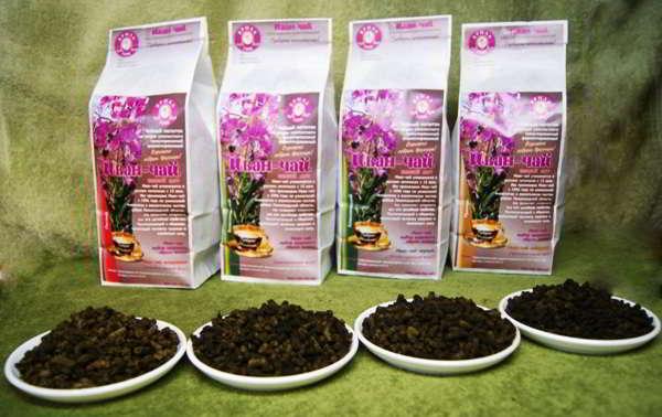 кипрей иван чай польза и вред