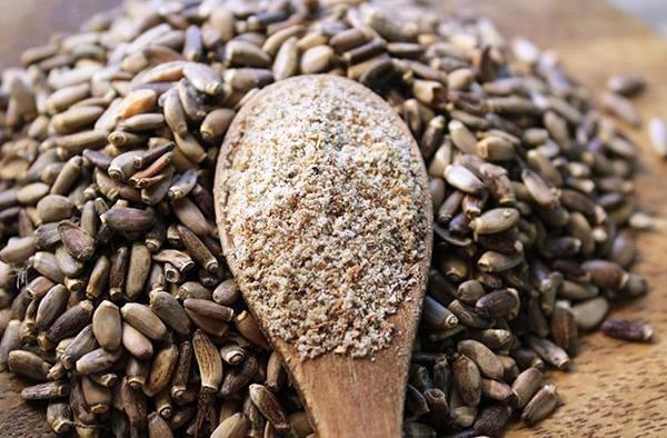 расторопша семена лечебные свойства