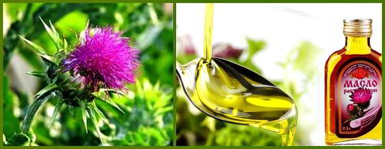 Масло расторопши польза и вред для организма, как принимать для лечения, красоты