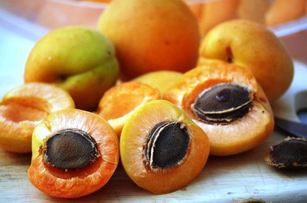 абрикосовые косточки лечебные свойства