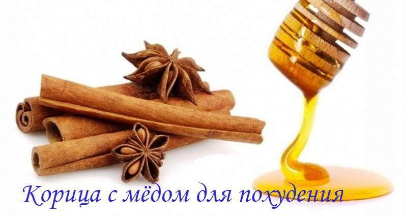 Корица с медом – рецепты для эффективного похудения