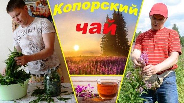 копорский чай приготовление в домашних условиях