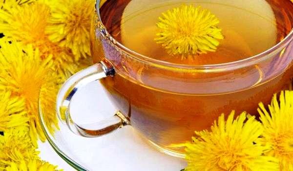 цветки одуванчика лечебные свойства рецепты