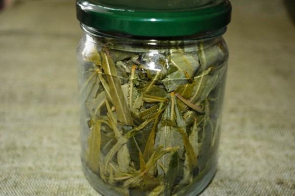 приготовление копорского чая в банке в домашних условиях