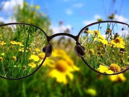 травы для глаз зрения