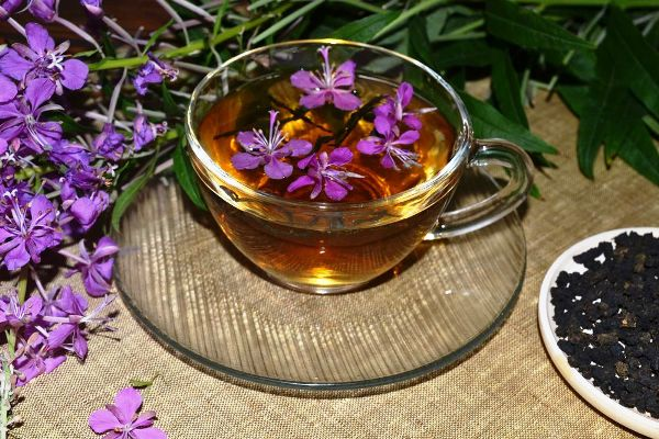 чай и цветками и листьями иван-чая