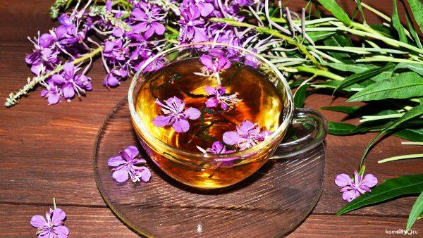 копорский чай польза для мужского здоровья