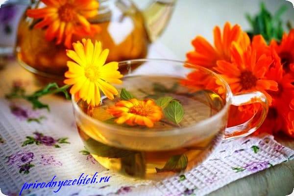 настой из цветков ноготки в чашке