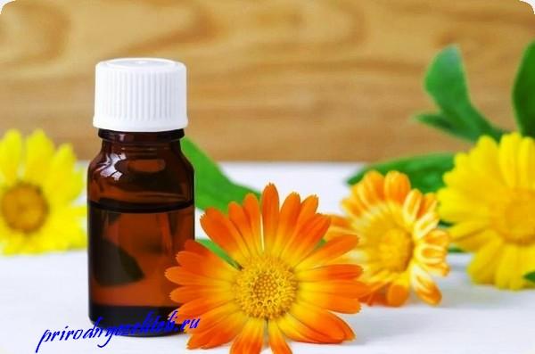 масло из цветков ноготки целебные свойства
