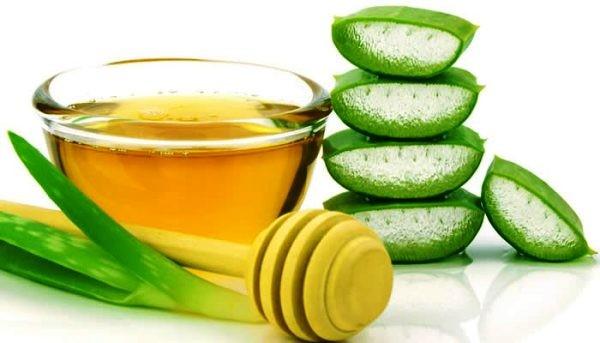 домашнее лечение желудка алоэ с медом
