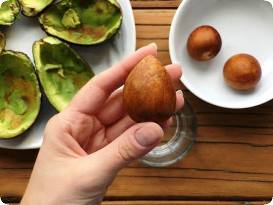 как выглядит косточка авокадо фото