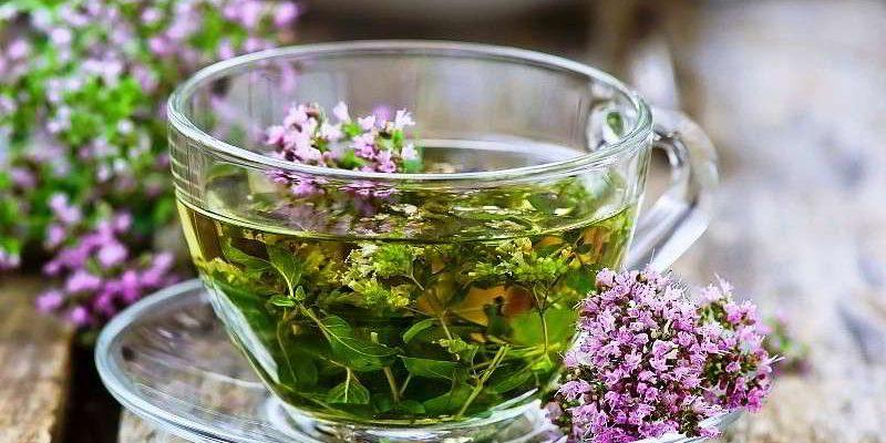 Чай с чабрецом: полезные свойства, как заваривать, ингредиенты и добавки