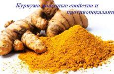 Куркума – полезные свойства, противопоказания, применение, рецепты