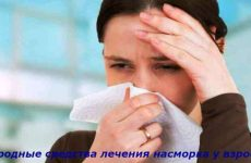 Эффективное лечения насморка у взрослых народными средствами