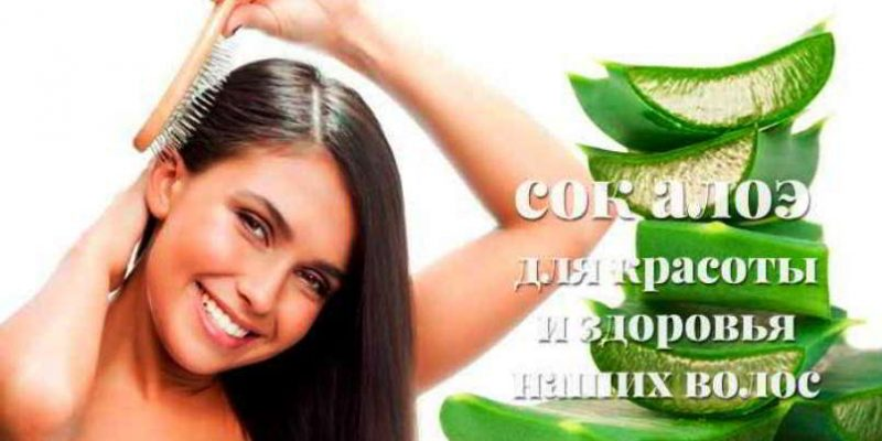 Сок алоэ для волос: польза, применение, рецепты домашних масок